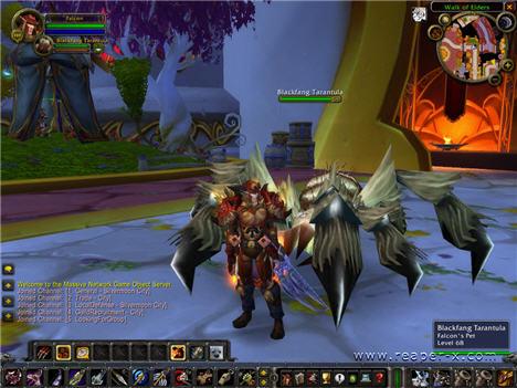 Скриншоты были сделаны со следующих версий world of warcraft: 1)432; 2)335a